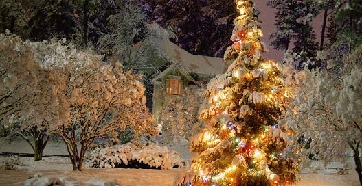 Рождество-Черкассы-MenuCKUA